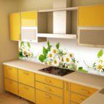 Нов гръб за кухня – нова визия на кухнята
