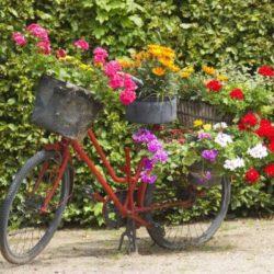 Направи си сам цветарник колело