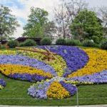 Оригинални идеи за градина: Цветен часовник