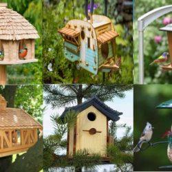 Как се прави къщичка за птици и хранилка за птици идеи и съвети