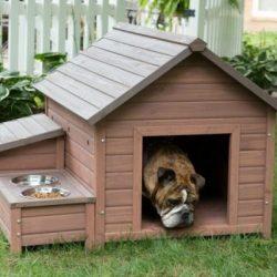 Кучешка къщичка, кучешка колибка идеи
