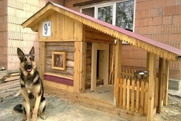 Как се прави кучешка колибка или кучешка къщичка