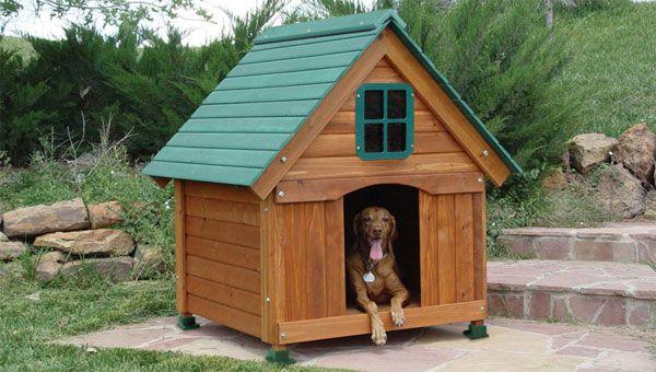 Кучешка къщичка и кучешка колибка с двукрилен покрив