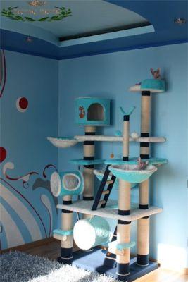 Място за игра на котки в интериора