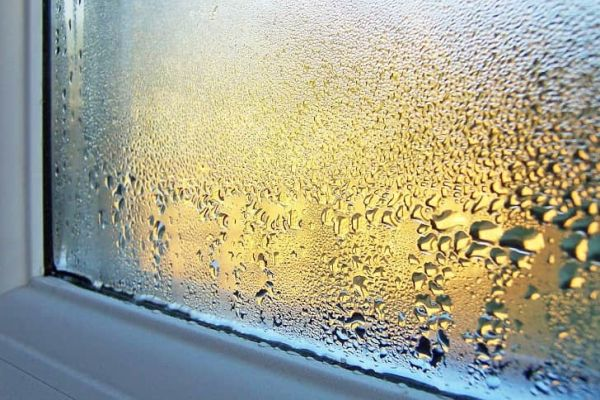Премахване на влага и мухъл завинаги начини и средства