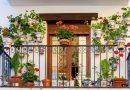 Дизайн на балкон с цветя: Подходящи видове, съчетания и оформяне на саксийните растения