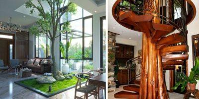 Живо дърво вкъщи – да направиш природата част от интериора