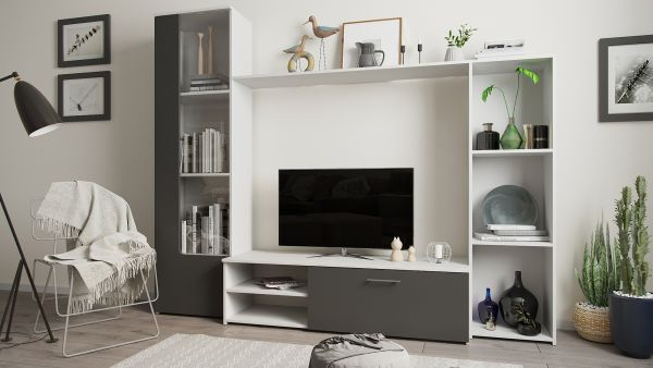 Модерни стенни шкафове и библиотеки за подреден хол